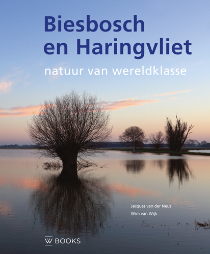 Biesbosch en Haringvliet