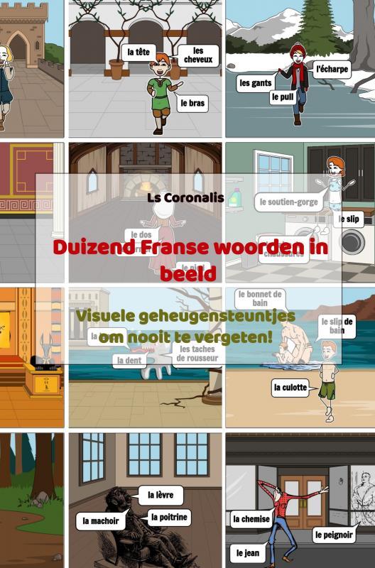 Duizend Franse woorden in beeld