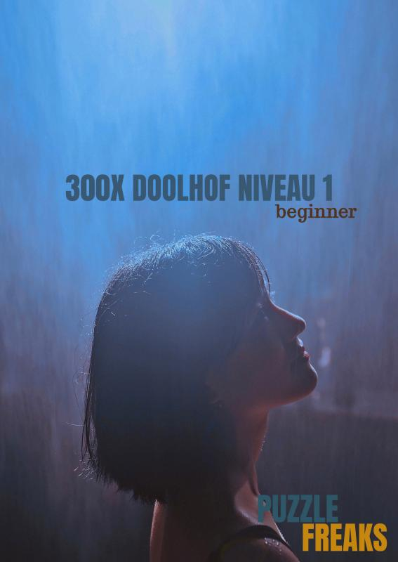 300X DOOLHOF NIVEAU 1