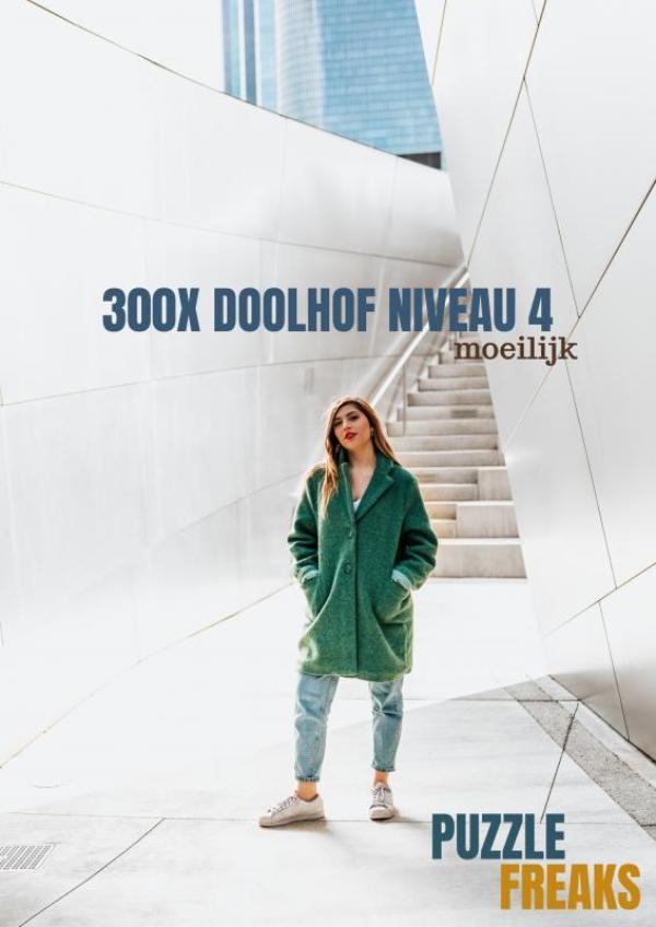 300X DOOLHOF NIVEAU 4