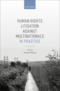 Human Rights Litigation against Multinationals in Practice