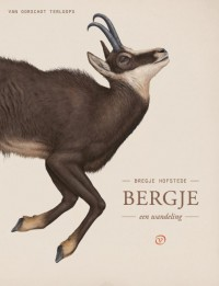 Bergje