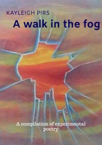 A walk in the fog door Kayleigh Pirs