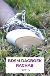 BDSM dagboek rachab deel 5